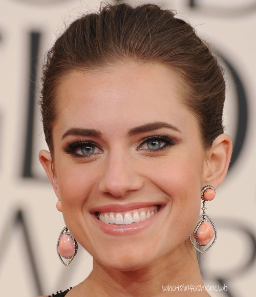 allison williams copy